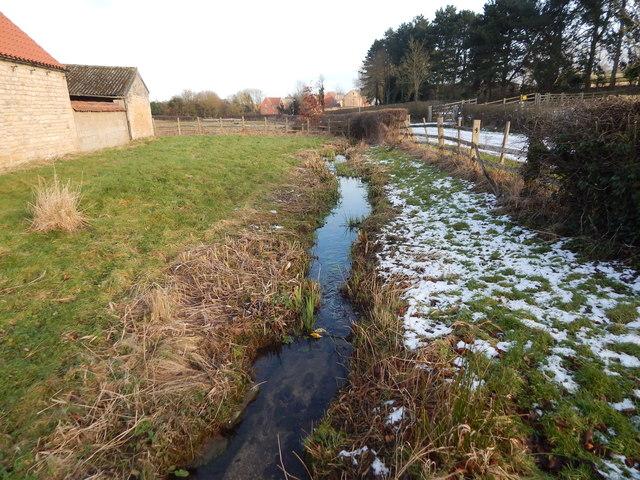 Stream, Woolsthorpe Manor