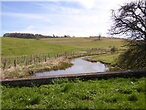 SP0514 : River Coln by Robin Webster