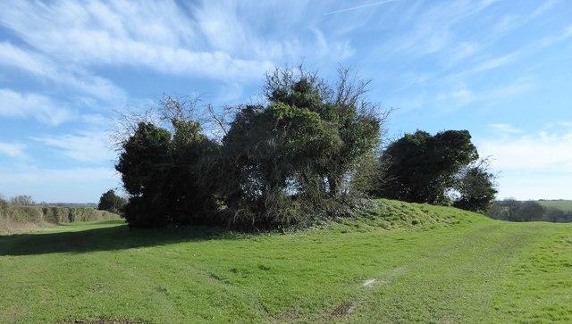 Norn's Tump long barrow, near Avening