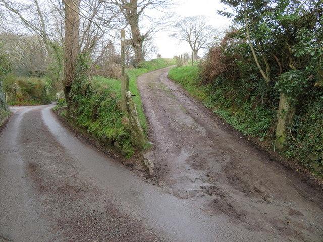 Track and footpath to Mynydd Tir Cwmwd