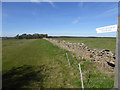 SP1030 : Permissive footpath to Durhams Ture by Robin Webster