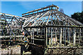 SJ6085 : The abandoned greenhouse at Walton Gardens by Matt Harrop