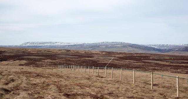 Fence across moorland