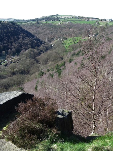 Eaves Wood and Colden Clough