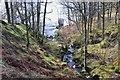 NN4809 : Burn entering Loch Katrine by Jim Barton