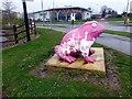 SE9726 : Pink frog at Melton Grange by Graham Hogg