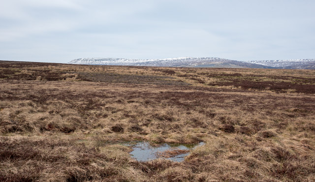 Moorland towards Ravensike Rigg