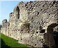TQ4109 : Ruins of Lewes Priory by PAUL FARMER