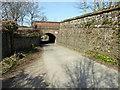 TQ4109 : Railway Bridge over Cockshut Road, Lewes by PAUL FARMER
