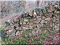 SH3231 : Old stone wall on Mynydd Tir y Cwmwd, and a rivet bench mark by John S Turner
