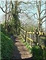 SX1352 : Hall Walk above Bodinnick by Derek Harper