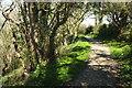 SX1351 : Hall Walk by Derek Harper