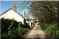 SX1353 : Lane at Lombard Farm by Derek Harper
