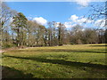 TL8782 : Open space, Thetford by Hamish Griffin