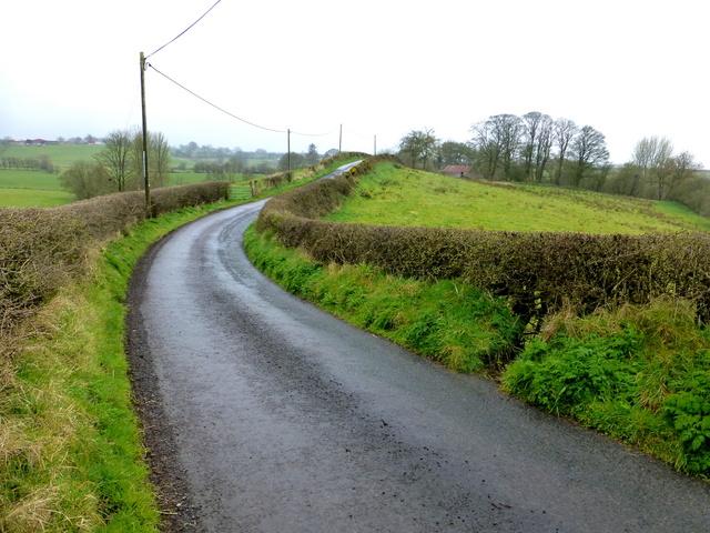 Dreenan Road, Bracky