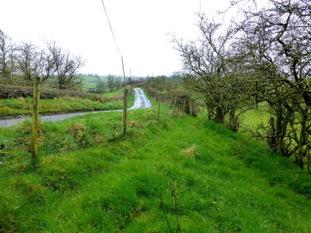 Fence and hedge, Bracky