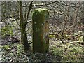 NS3983 : Old gatepost by Lairich Rig
