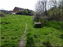 TQ7809 : Path in Combe Valley Countryside Park leading to Reedswood Road by PAUL FARMER
