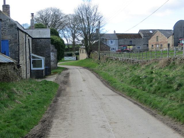 Butsfield Lane near North Farm