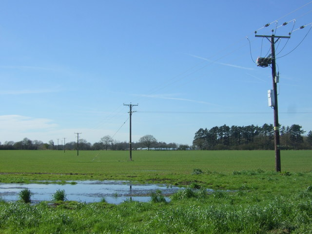 Soggy field and power lines
