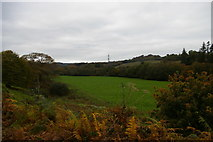 SX1061 : Looking up the Fowey valley, north of Restormel by Christopher Hilton