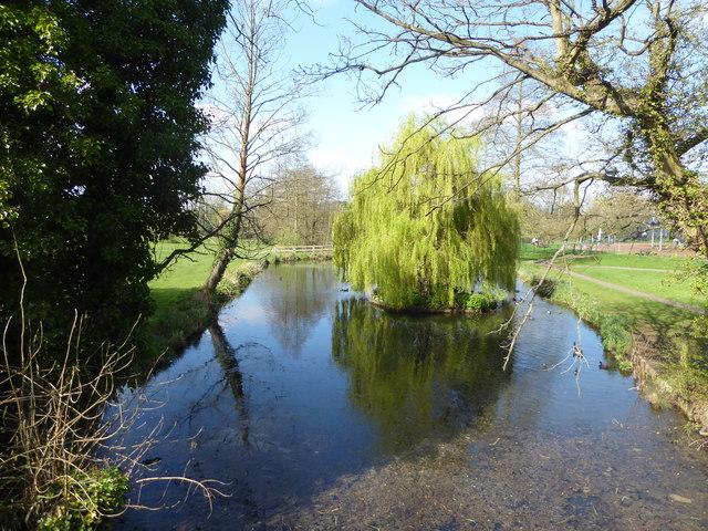 Pond in Holywells Park