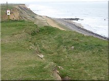 SZ2492 : Subsidence on cliffs at Barton on Sea by David Smith
