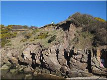 TA0390 : Rocks alongside Scalby Beck by Stephen Craven
