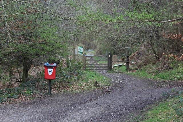Start of hillside path up to Twmbarlwm