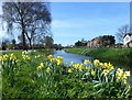 TF5103 : The River Nene (old course) in Outwell and Upwell, Norfolk by Richard Humphrey