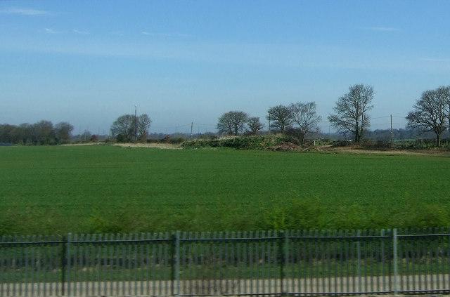 Crop field near Hademore