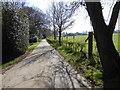 TQ3536 : Footpath towards Fen Place Farm by Shazz