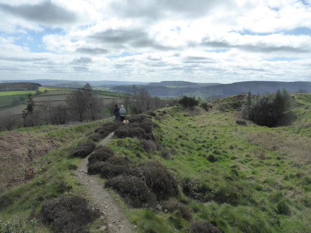On the ramparts of Bury Ditches hillfort in spring