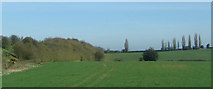 SK1409 : Crop field beside the A38 by JThomas