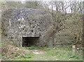 ST4854 : Old limekiln by Neil Owen