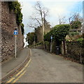 SO6023 : One-way signs, Chase Road, Ross-on-Wye by Jaggery