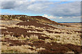 NY9513 : Outcrops on Bowes Moor by Chris Heaton