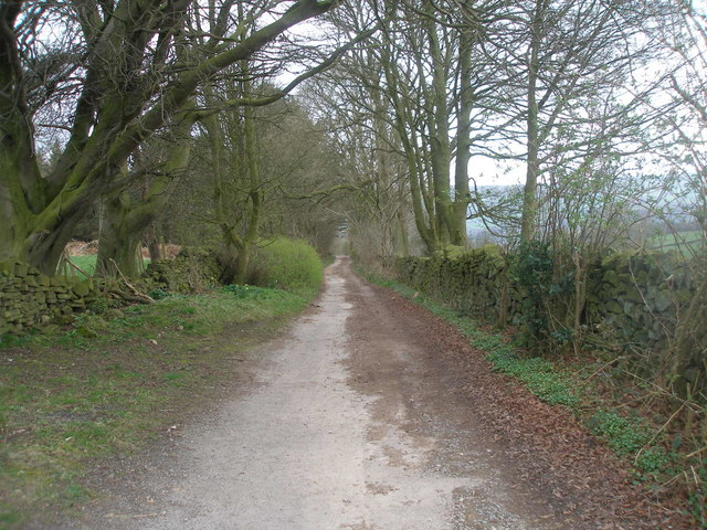 Lane towards Two Dales south of Sydnope Hall Farm