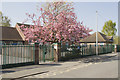SK3832 : Wyndham Street by Malcolm Neal