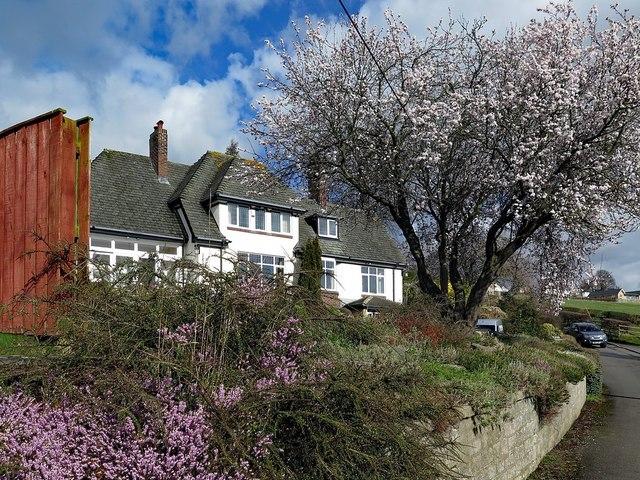 House on Heddon Banks