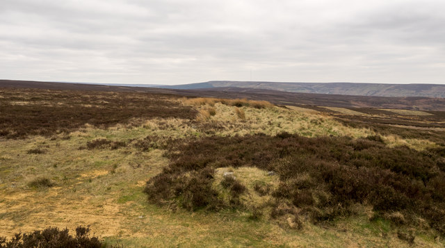 Moorland alongside Cleveland Way
