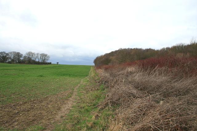 Pettocks Lane