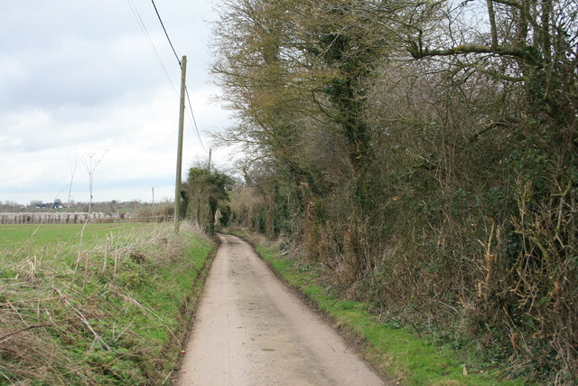 Pettocks Lane near Staple Road