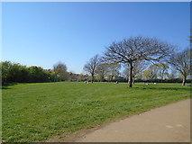 TQ3005 : Dyke Road Park by Paul Gillett