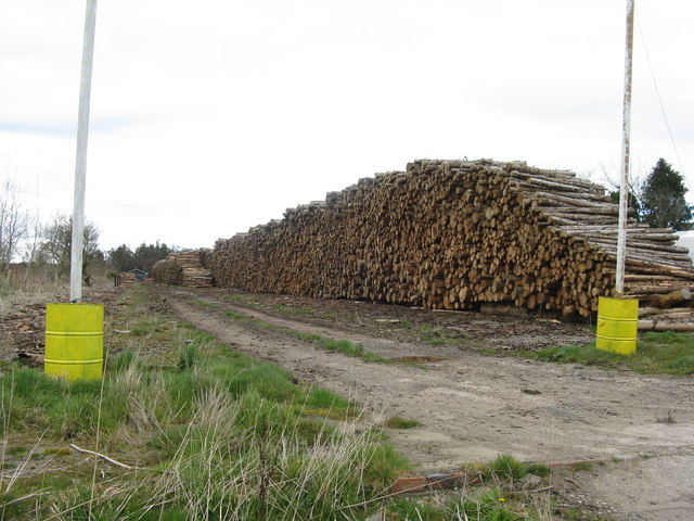 Timber holding facility
