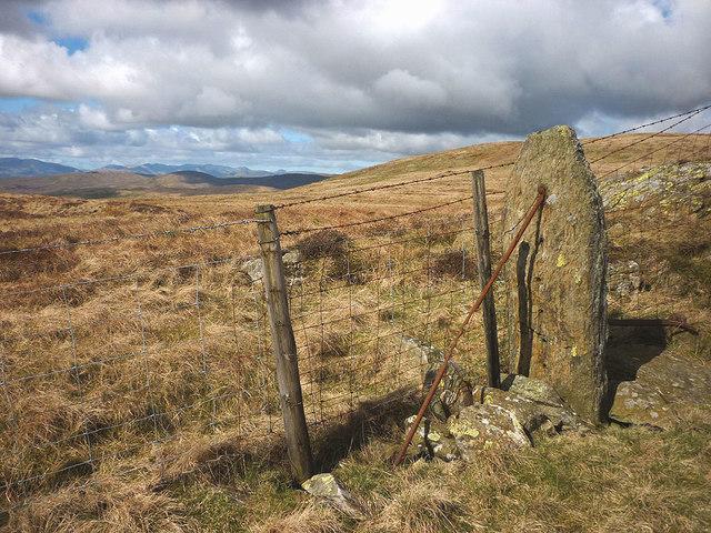 Stone fence post on Capplebarrow