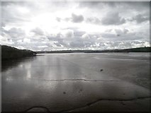 SX4561 : Mudflats of River Tavy by Matthew Chadwick