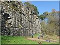 NN8618 : Climbing Bennybeg Craig by M J Richardson