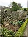 SH5573 : The Kitchen Garden by Richard Hoare