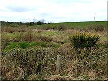 H5071 : Rough ground, Cloghfin by Kenneth  Allen